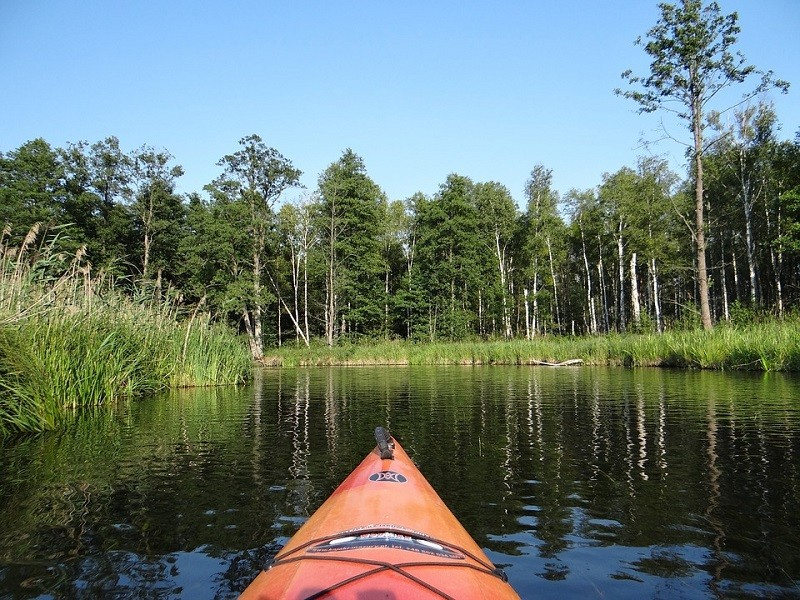 Rafting on the Budkowiczanka river