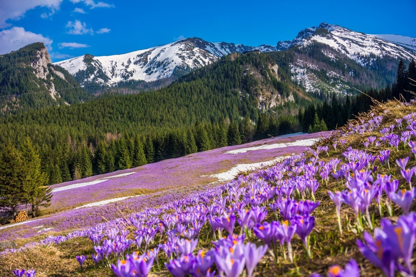 The best sites to welcome spring by ITS DMC Poland