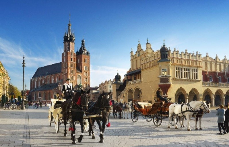 Cracow all day sightseeing