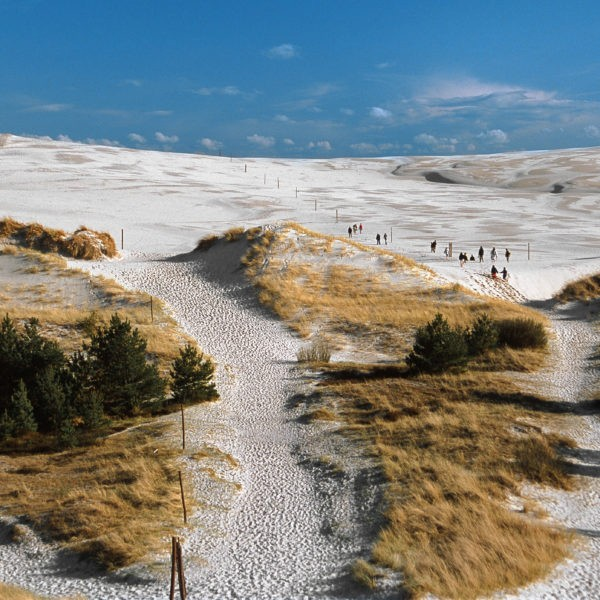 Moving Dunes & Seals - Highlights of Łeba Vicinity