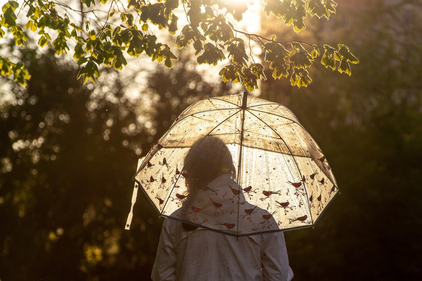 When should you travel? A short guide to Polish weather