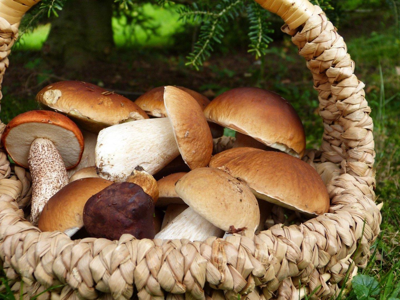 5 ideas for autumn break in Poland