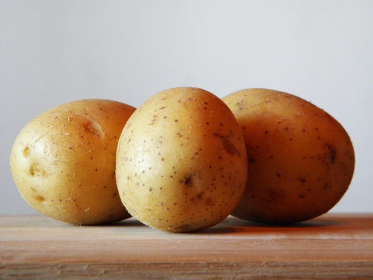 Potato Museum of Poznań