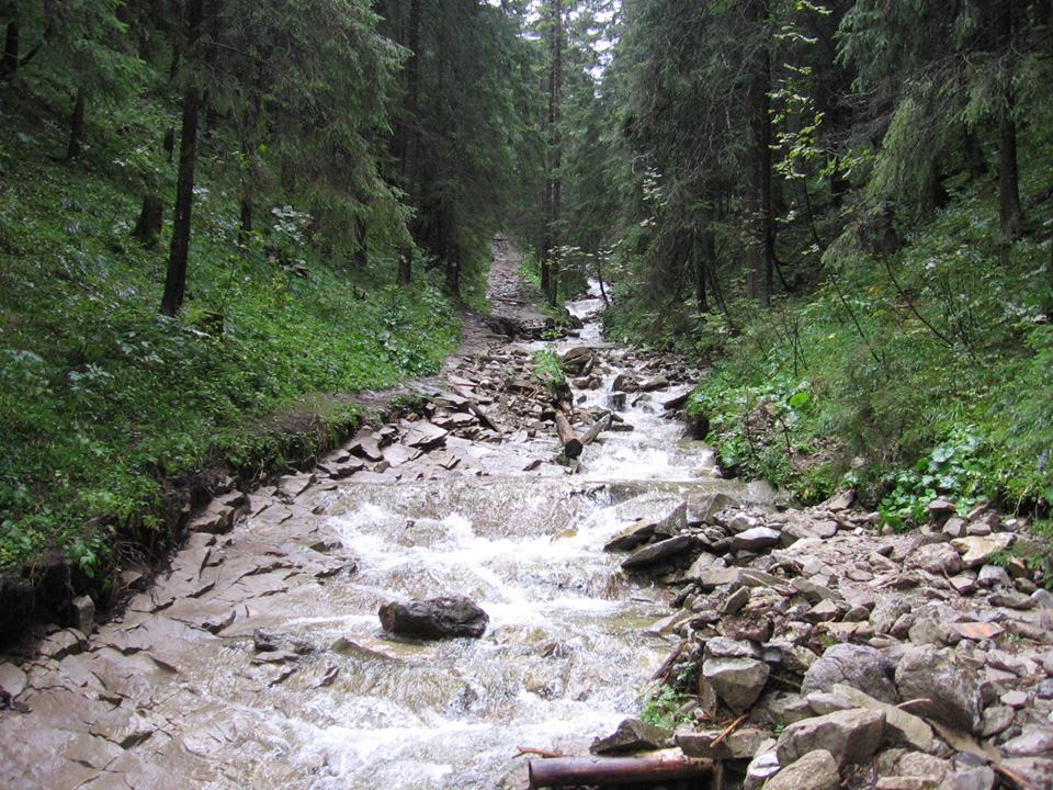 Lejowa Valley, Zakopane