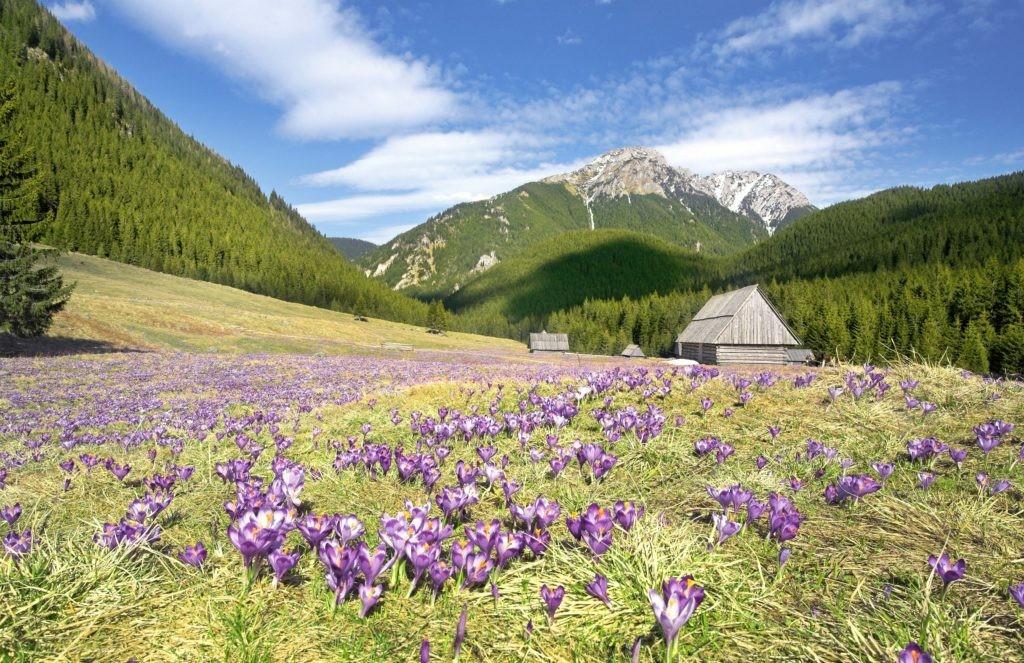 Man & Biosphere Reserves in Poland
