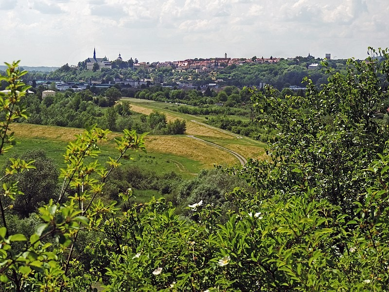 Sandomierz Valley and its vicinity