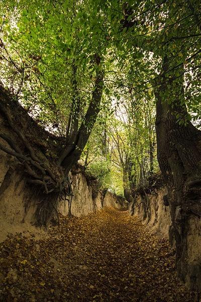 Walking Trails in Poland
