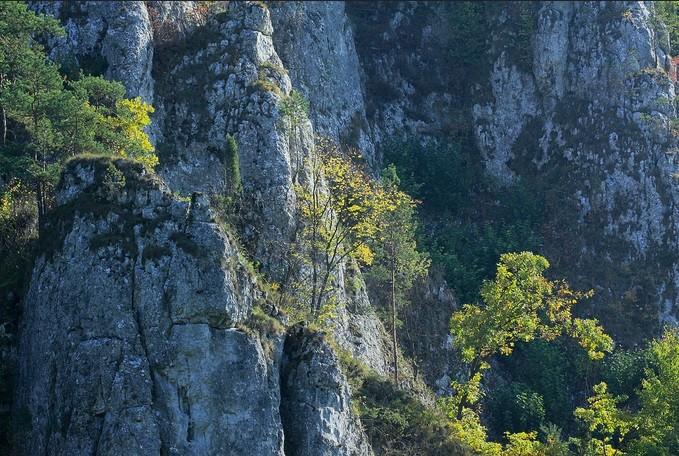 Climbing in Jura (Rancho Jura)