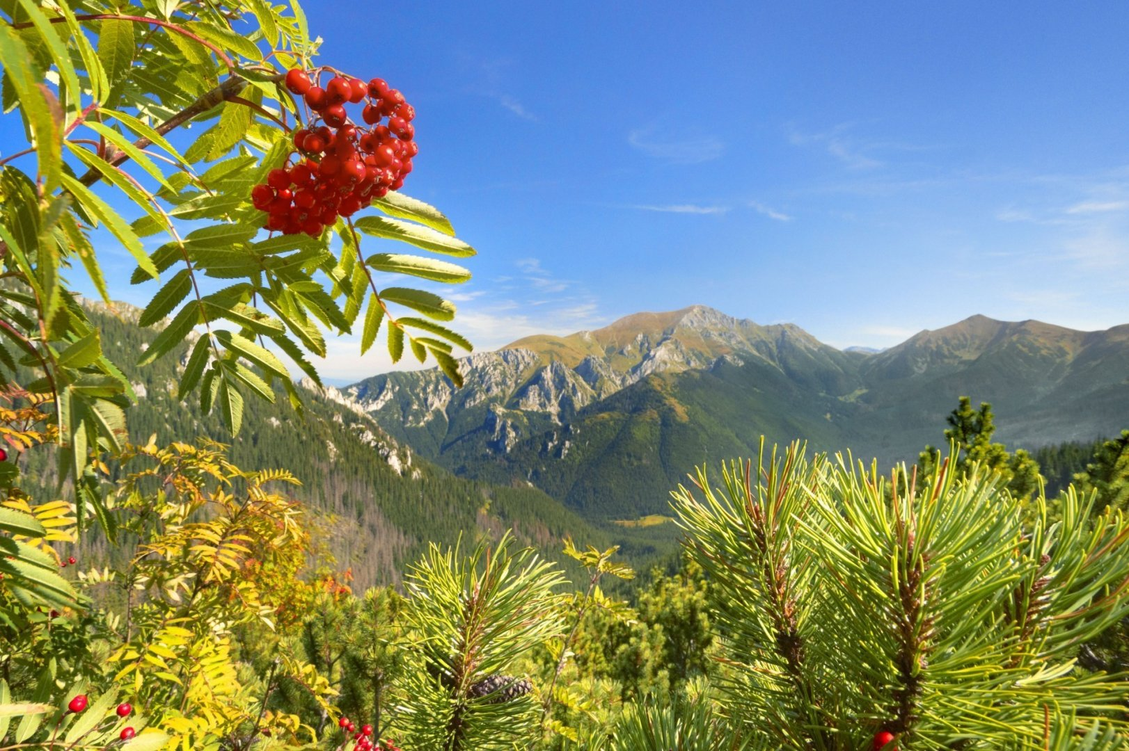 Natural Attractions of Poland
