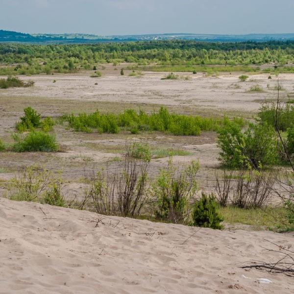 Sightseeing of Jura Krakowsko-Częstochowska