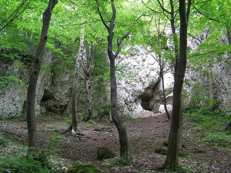 Upper Wierzchowska Cave