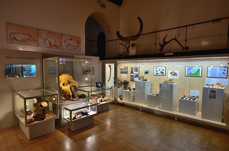 Natural History Museums in Poland
