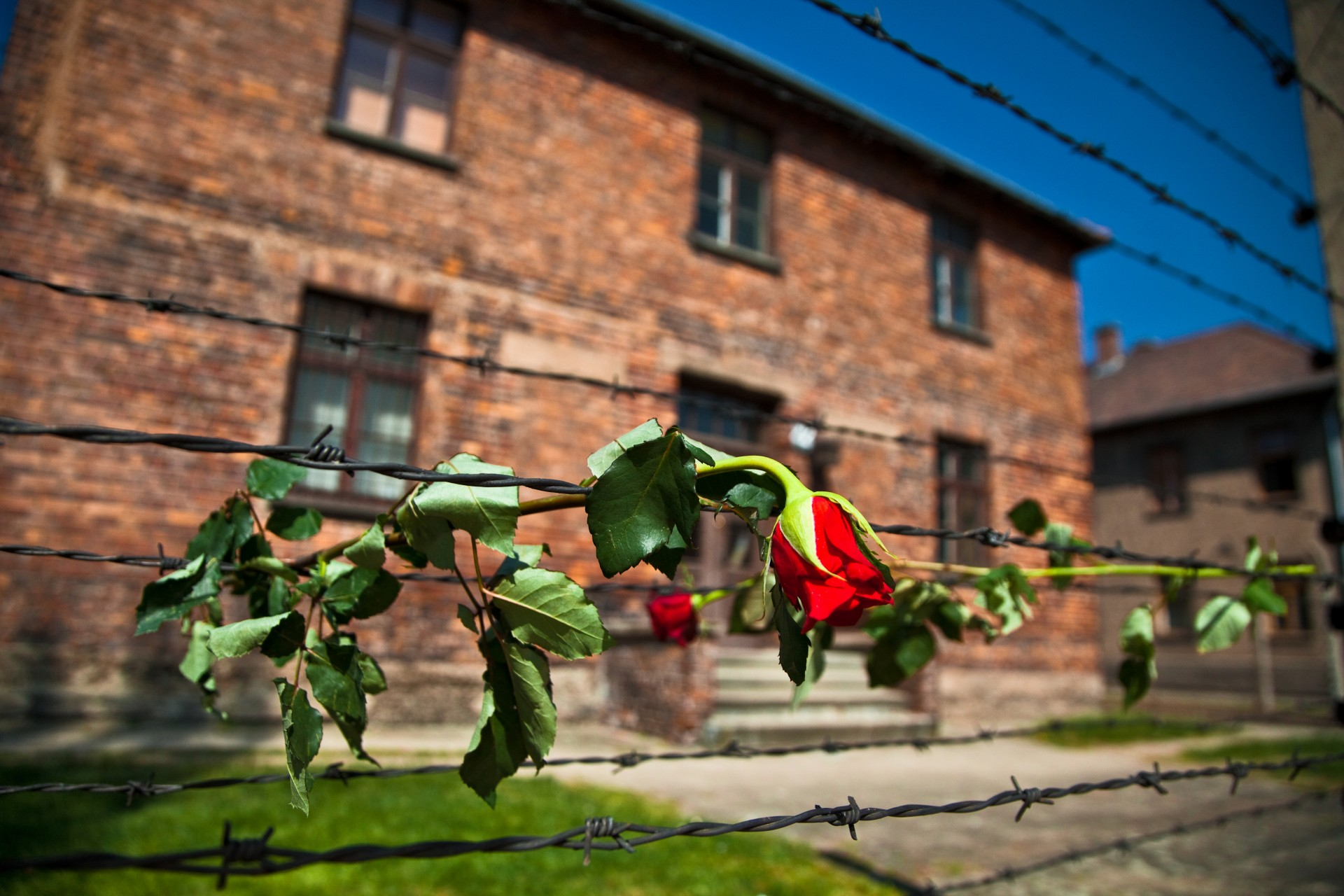 Historical and military attractions in Poland