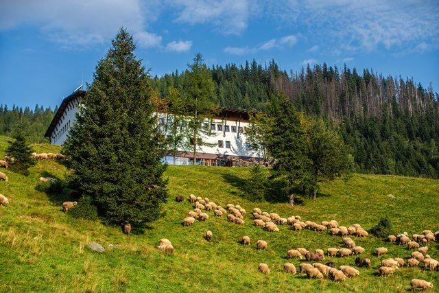 Kalatówki Mountain Hotel - Zakopane